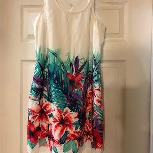 Short -Mid Length Dresses